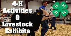 Cattlemen's Days Events 4-H