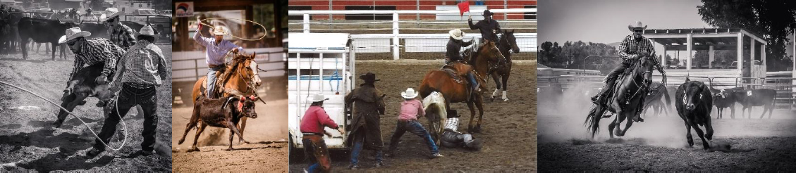 Cattlemen's Days Ranch Rodeo Photos